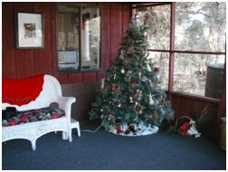TGO Nature Center, nature, old, center, Christmas, tree, decorated