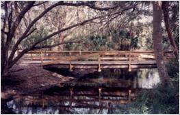 Bridge To The Nature Center