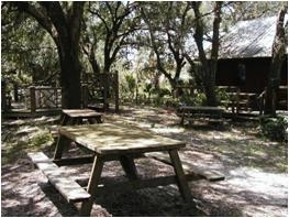 Yard With Picnic Tables