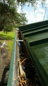 TGO Nature Center, Nature, The Great Outdoors, Titusville, Florida, Gary Henry, Volunteer, About Us, Gutters, Cleaning