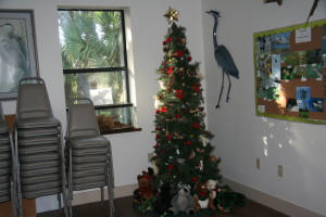 TGO Nature Center, Nature, The Great Outdoors, Titusville, Florida, Holiday Decorations, Decorating, Christmas, Volunteers, 2015, Photo Album