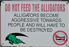 Do Not Feed Alligators - Clip Art from Publisher