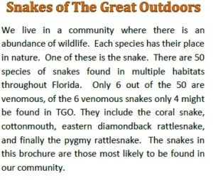 TGO Nature Center, Nature, The Great Outdoors, Titusville, Florida, TGO, Volunteers, Snakes of The Great Outdoors